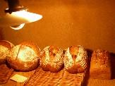 はちはちのパン.jpg