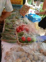 夏野菜がいっぱい.jpg