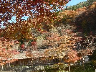 大沢温泉の秋.jpg