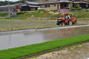 田植えの季節.jpg