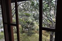 窓の向こう.jpg
